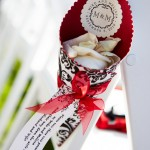 Guest were supplied with paper cones filled with white roses petals to shower the couple with during the recessional